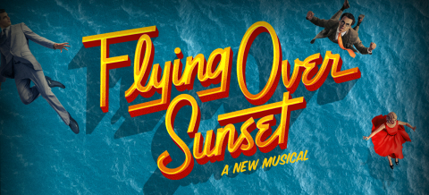 flying-over-sunset-logo logo image