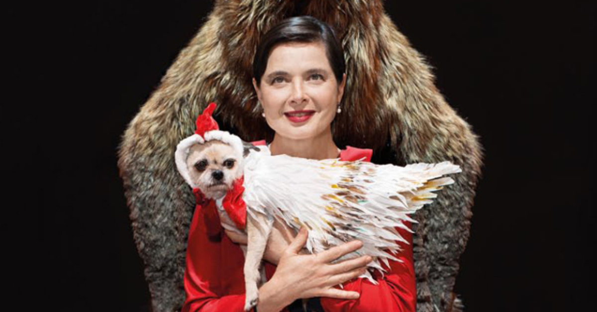 Isabella Rossellini and Her Dog to Star in Link Link Circus Off-Broadway