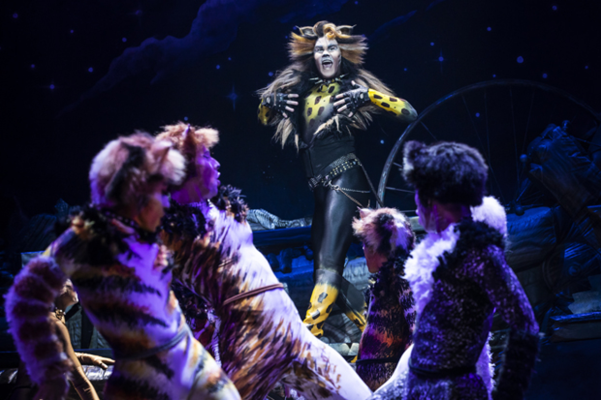 Meow Mix! Check Out New Photos From the National Tour of Cats